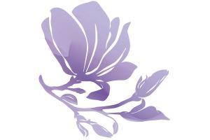Magiray logo, Magnolia